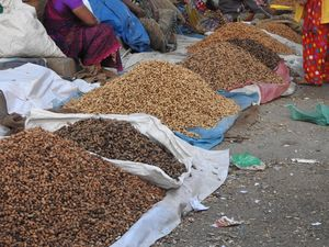 Bangalore - Annual Groundnut Fair - Kadlekai Parishe - A 400 year old tradition