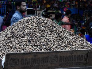 Bangalore - Annual Groundnut Fair - Kadlekai Parishe - A 400 year old tradition
