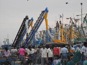 Kasimedu Fish Market Chennai - a photo tour