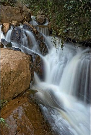 Law's Falls 1/undefined by Tripoto