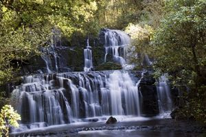 Catlins Forest Park 1/undefined by Tripoto