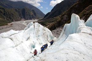 Fox Glacier 1/undefined by Tripoto