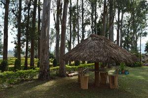 Padmapuram Garden 1/1 by Tripoto