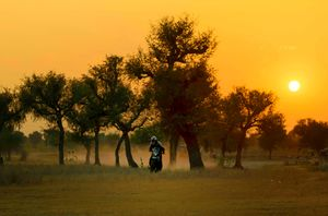 Mahansar 1/undefined by Tripoto