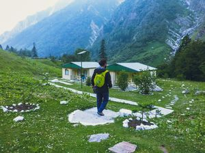 The Story of the New Phase of the Valley of Flowers After the 2013 Floods