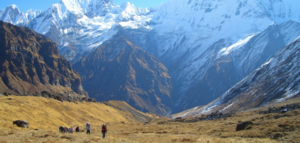 Can't Make It To Annapurna Base Camp (ABC)? Try These 5 Incredible Treks Instead!