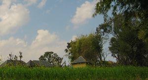 Balh-Brahmin: Scenes from a Utopian Countryside