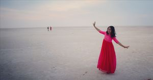 Rann of kutch.. a Dream land explored in 2 days including kala dunger and mandavi beach.