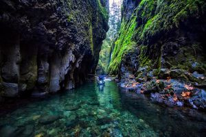 Oneonta Gorge 1/undefined by Tripoto