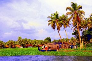 Why Kerala Should Be Your Next Holiday Destination
