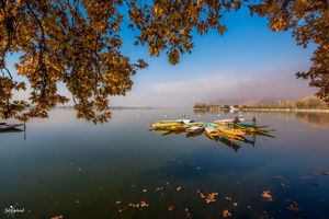 Experience the unseen Indian Autumn in Kashmir. #bestof2018