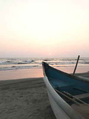 Sea Bird Beach Cafe 1/undefined by Tripoto