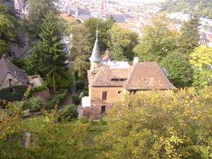 Heady Heidelberg