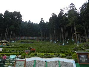Picturesque Darjeeling and Gangtok