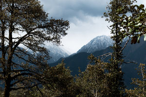 Just 2 Hours Away From Dharamshala, Lies A Beautiful Hamlet, And It Is Strange AF!