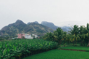 After Pondicherry, Head To This Lesser Known Tropical Town For Your Next Getaway