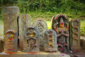 Nagaraja Temple 1/undefined by Tripoto