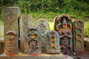 Nagaraja Temple 1/1 by Tripoto