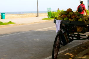 10 Reasons Why Pondicherry Should Be Your Next Travel Destination