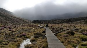 Tongariro Alpine Crossing 1/undefined by Tripoto