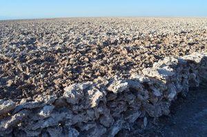 Salar de Atacama 1/undefined by Tripoto