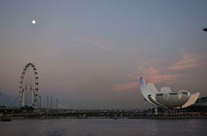 Singapore Flyer 1/24 by Tripoto
