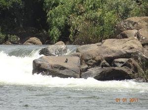 Adventure Karnataka 1/5 by Tripoto