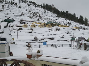 Auli, the winding road and a twist at every turn.