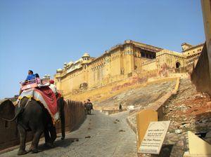 Alluring Jaipur