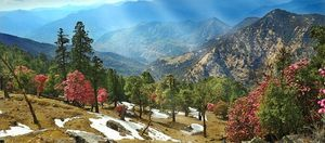 Kausani : A well known hill station