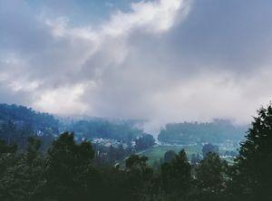 Kodaikanal: The Princess of Hills Wrapped in Mist #notinnorth