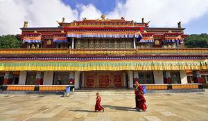 Rumtek Dharma Chakra Centre 1/12 by Tripoto