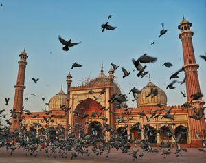 Have a day in Delhi? Here's a list of places you must visit. #ADayInDelhi