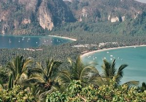 Phi Phi Islands Ao Nang Krabi Thailand 1/undefined by Tripoto