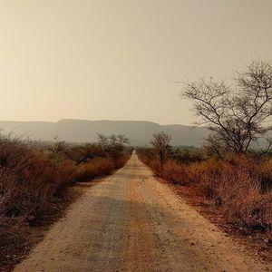 Delhi Nearby Trips: Sariska..Tiger Reserve