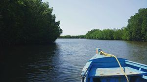 Trip to World's second largest Mangrove forest