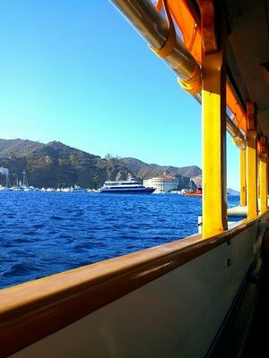 Catalina Glassbottom Boat Inc 1/undefined by Tripoto