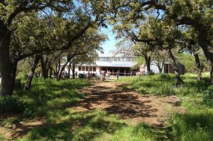 Jester King Brewery 1/2 by Tripoto