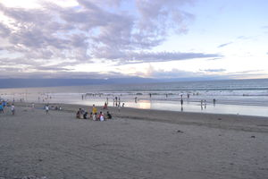Baler | For the Love of Surfing