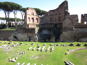 Palatine Hill 1/undefined by Tripoto