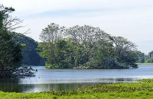 Karanji Kere Lake Park & Boating 1/1 by Tripoto