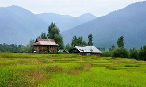 5 Unexplored Places Of Kashmir That You Must Visit