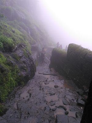 Lohagad Monsoon Trek - A must do!