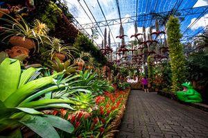 Photo of Nong Nooch Tropical Botanical Garden Pattaya City Thailand