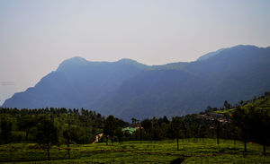 mountains calling- udagmandlam (ooty)