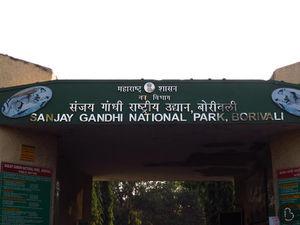 Travel Diary: Sanjay Gandhi National Park