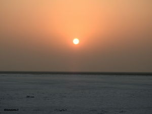 The White Desert of India - Rann of Kutch! #TravelIndia