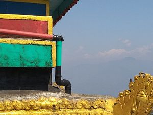 Sittong: The orange village of Darjeeling and a lot more...