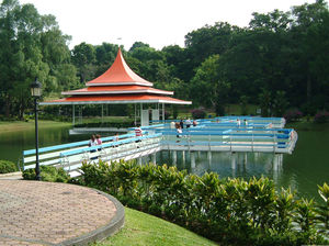 MacRitchie Reservoir 1/18 by Tripoto