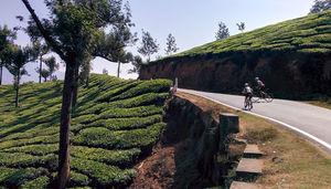 Highlights of Kerala -  6 Days (Daily)